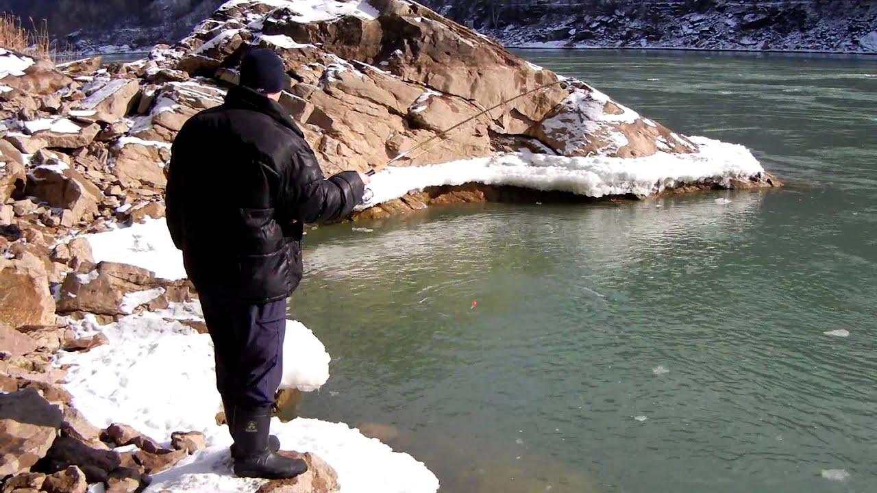 Niagara river rainbow trout youtube for Niagara river fishing report