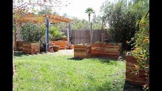 My Raised Bed and Grow Bag Garden in Phoenix, Arizona - February 16th 2018