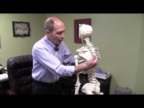 Rib Pain, Rib Fracture, Bruised Ribs, Auto Accident Pain, Pinellas Park FL