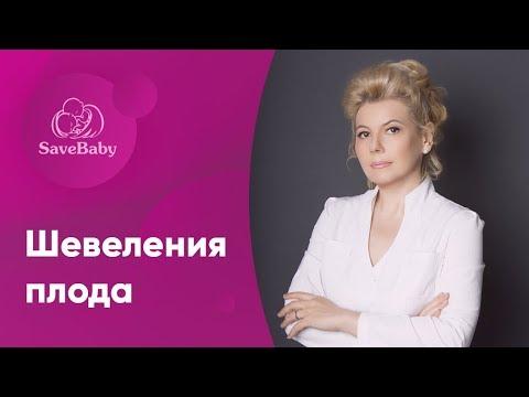 Шевеления плода. Елена Никологорская. Акушер-гинеколог. СПб