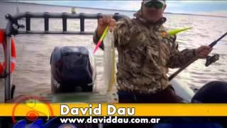 Pesca Vision 05 07 2015
