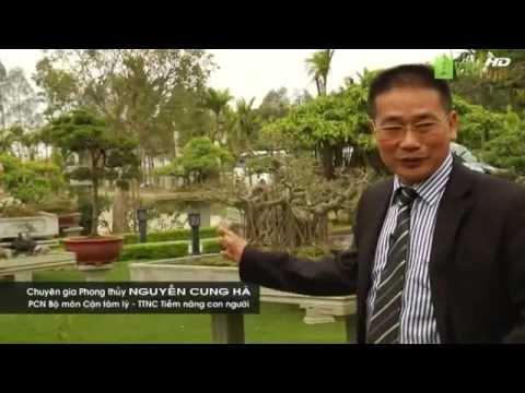 P3. Thầy Nguyễn Cung Hà tư vấn về phong thủy cho đất vườn và trang trại