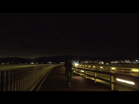 SONY FDR-AX700 4K Sample test video - Handy shot with walk / FDR-AX700撮影テスト:夜間歩き撮り