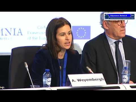 Plenary Session - Which crisis and legal values? 2. Anne Weyembergh