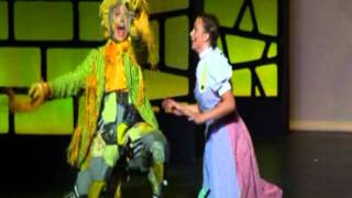 If I Only Had a Brain - Wizard of Oz