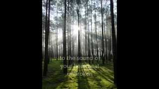 Anathema - The Lost Song Part 2 (with lyrics)
