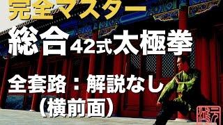総合42式太極拳 完全マスター全套路:解説なし 横前面 中村元鴻