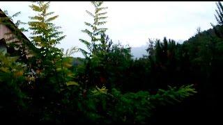 VLOG: 2/3 Санаторий Коктем. Алматы. Дождь. Рисунок. Тренажёрка.(Вторая часть. Погода как женщина. Утром одно настроение, в обед абсолюууутно другое!, 2015-09-01T16:22:17.000Z)