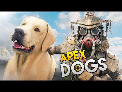 *EASTER EGG* DOG IN APEX? - Best Apex Legends Funny Moments and Gameplay Ep 257