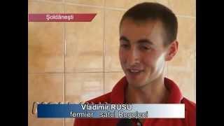 MOLDOVA+    Își dorește o fermă, ca în Europa