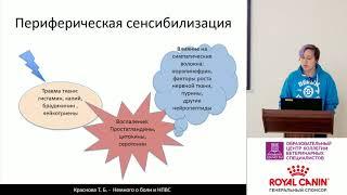 Краснова Т. Б. -  Немного о боли и НПВС