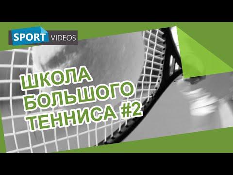 Техника настольного тенниса Основные элементы Мир