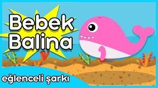 Bebek Balina / Türkçe Baby Shark Çocuk Şarkısı