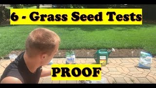 Grass Seed - Grass Seed Test PROOF! | Grass Seeding Before and After Results (LAWN CARE)