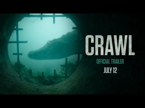 Crawl is listed (or ranked) 10 on the list The Best Thriller Movies of 2019
