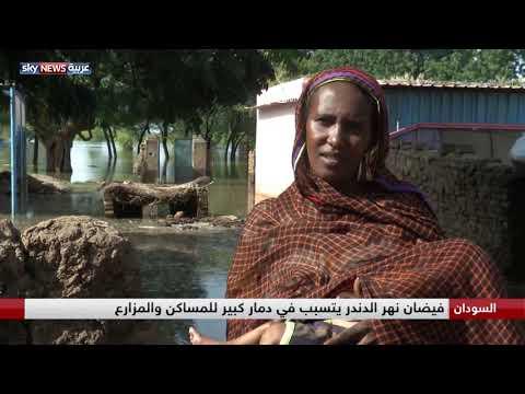 السودان.. فيضان نهر الدندر يتسبب في دمار كبير  - نشر قبل 45 دقيقة