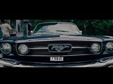 Lev Tahor - Hallelu (Official Music Video)