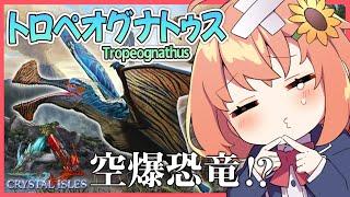 【ARK:Crystal Isles】空中爆破⁉★トロペオグナトゥスで爆破する。【本間ひまわり/にじさんじ/にじARK】