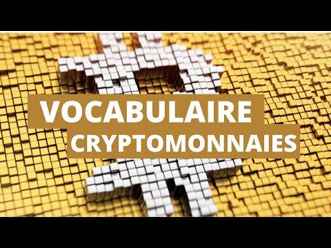 LE VOCABULAIRE DES CRYPTOMONNAIES !