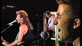 Icehouse - Nothing Too Serious