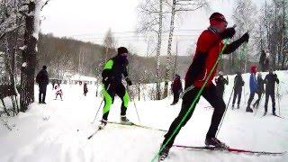 Первенство Московской обл. по лыжным гонкам 17 января 2016 г. Красногорск