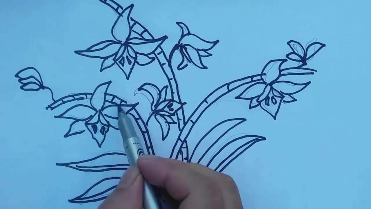 Cách vẽ Hoa phong lan Phi điệp đơn giản cho Học sinh tiểu học