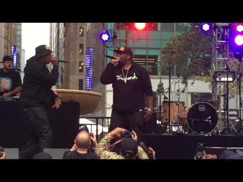 """EPMD Perform """"You Gots To Chill"""" at Roots Picnic NYC"""