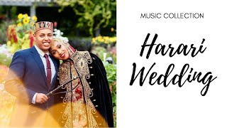 Nasir Abdela Aruz AyamkhashEthiopian Harari Wedding Music Audio.mp3
