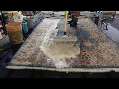 Flushing Animal Urine Out of a Heavily Soiled Rug at Arizona Oriental & Specialty Rug Care