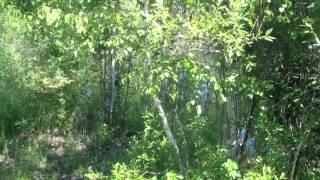 видео земельные участки в орехово-зуевском районе