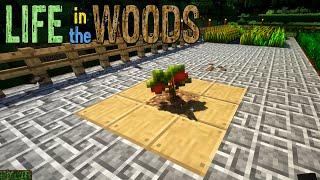 🔨 Minecraft 011 | Chi Chi CHi Chisel | Gameplay thumbnail