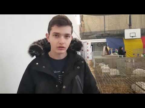 Vasiu Alexandru, tânărul