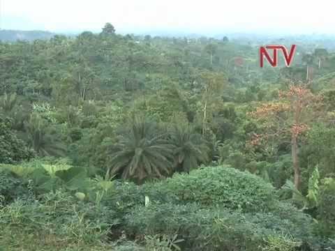 NTV Connect: The Hilly Bundibugyo District