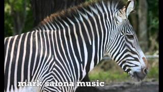 """COCHABAMBA ""  Upbeat Bouncy GOOD TIME Piano SOLO   by mark salona"