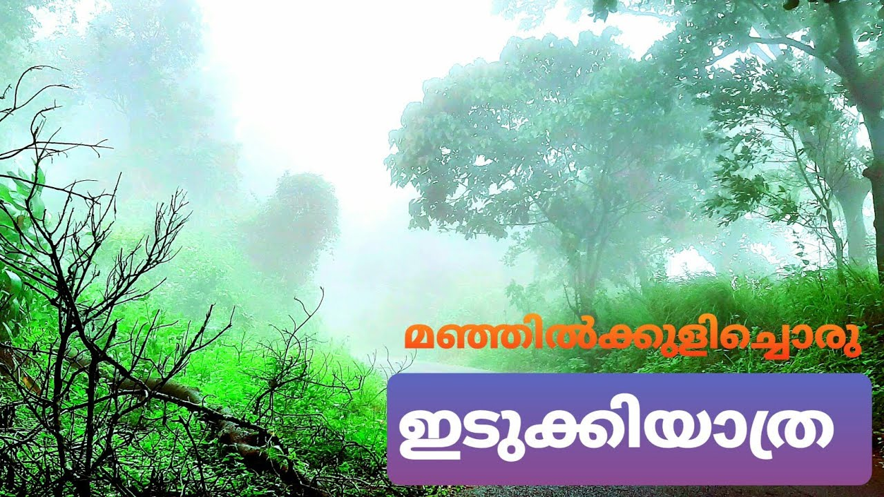 Idukki - A drive on clouds|Foggy weather and Uppukunnu Viewpoint| Best place in IDUKKI