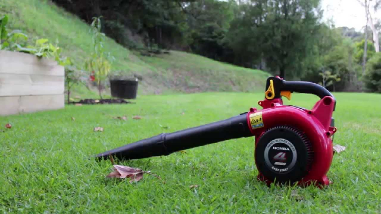 Honda hhb25 25cc 4 stroke leaf blower cold start sound and use honda hhb25 25cc 4 stroke leaf blower cold start sound and use youtube publicscrutiny Gallery