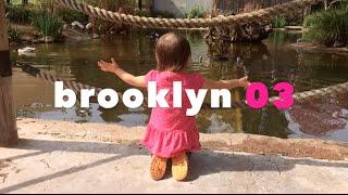 Brooklyn 03 (director&#39s cut)