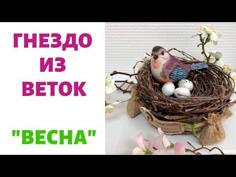 Вопрос: Как сделать птичье гнездо своими руками?