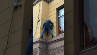 Культурная столица России, или как обидели кота Елисея на Малой Садовой