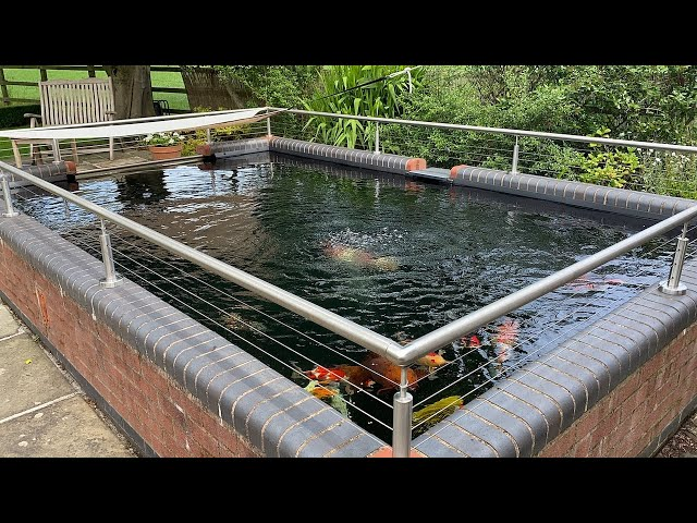 6000 Gallon Pond - 2 Older model Nexus 200 series!