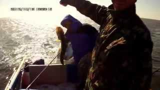 видео Рыбалка и охота