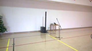 Bose L1 B2 Speakers AMAZING SOUND (Silent NIght) Xmas, Christmas, Music