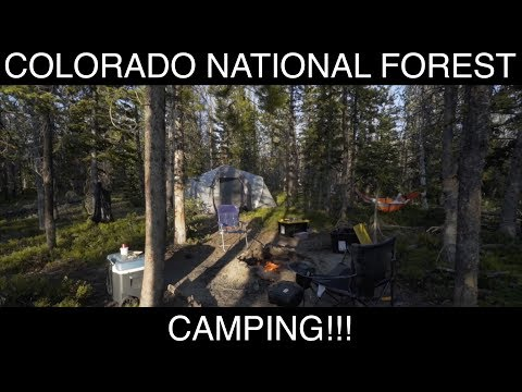 Camping - Colorado's Routt National Forest!!!