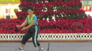 Merry Christmas Tai Chi from Hawaii everydaytaichi by lucy chun Honolulu