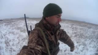 Охота на северную утку видео