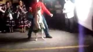 Собака танцует мамбо
