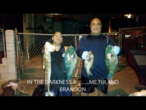 DARKNESS 4......SPEARFISHING AT NIGHT OR NIGHT DIVING HAWAII