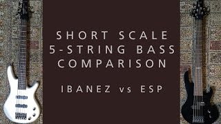 short scale 5 string bass comparison ibanez gsrm25 mikro vs esp ltd b 5jr 5 demo review 2