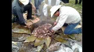 barbacoa pedro maya 03 en barrio sur de carpinteros hidalgo.