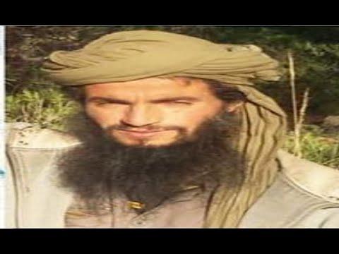 من هو الارهابي مراد الشايب الذي أعلنت وزارة الداخلية التونسية قتله  - نشر قبل 4 ساعة